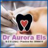 Dr Aurora Els